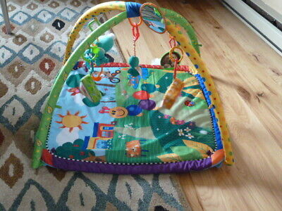 Baby Einstein Activity Gym Play Mat Seek And & Discover Baby Infant