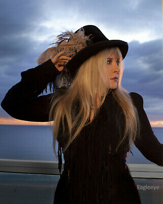STEVIE NICKS Gloss 8x10 Photo Music Poster Fleetwood Mac Print Color