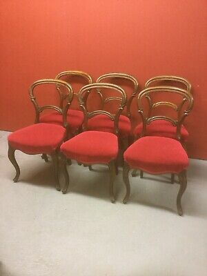 6 Antique Rosewood Balloon Back Chairs Sn-553a