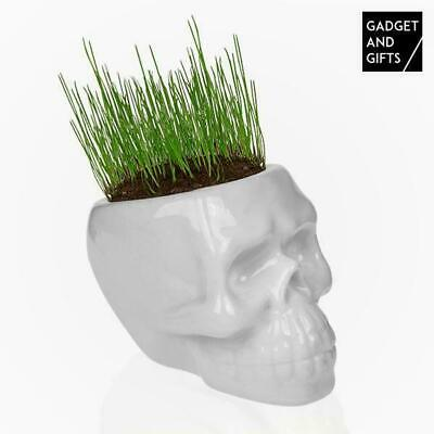 Gadget and Gifts Skull Grass Plant Pot