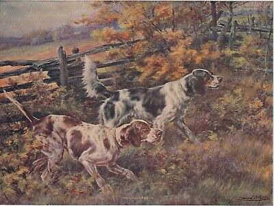 "Uncirculated Edmund Henry Osthans ""Throughbreds""  Sutherland Press Lithograph"
