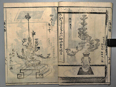 19th C. Japanese flower arrangement Ikebana kado Antique woodblock print book