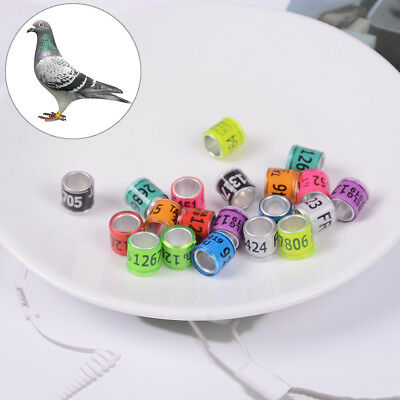 2019 foreign pigeon leg rings identify dove bands plastic aluminium ring  sf