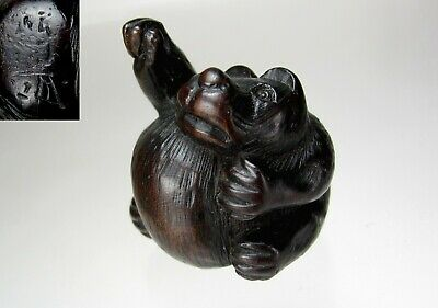 MINKO, 19th Century, Japanese Boxwood Netsuke, Tanuki Badger