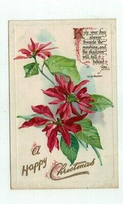 1910 Tuck antique Embossed Christmas Post Card Poinsettia Whitman Verse Gold