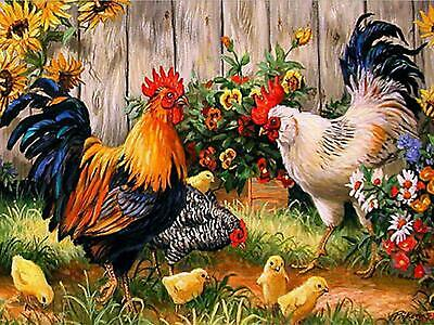UK Full Drill, Square Diamonds , Diamond Painting Chickens  Kit