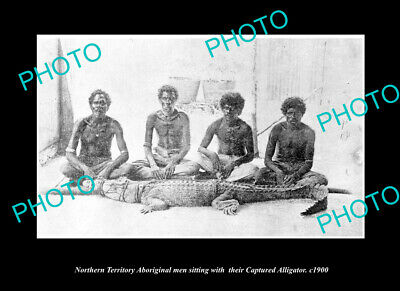 OLD LARGE HISTORIC PHOTO OF ABORIGINAL MEN WITH CAPTURED CROCODILE c1900