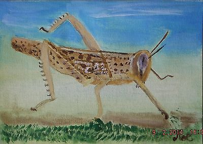 Locust   Acrylic painting  insect on A5 Canvas sheet  signed By Artist