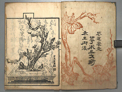 Japanese flower arrangement Misho-school Ikenaba Antique woodblock print book