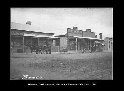 OLD LARGE HISTORIC PHOTO PINNAROO SOUTH AUSTRALIA, THE MAIN ST & STORES c1910