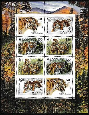 Russia WWF Siberian Tiger Sheetlet of 2 sets / 8 stamps MNH SG#6443-6446