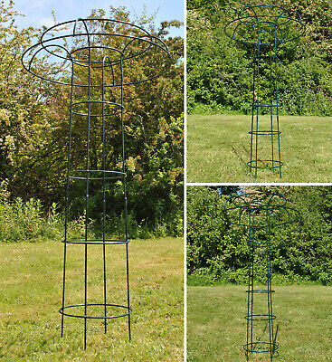 Metal Tuteur Plant Support for Climbing Garden Plants 3 Sizes Available