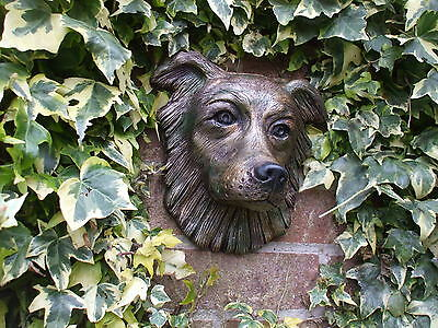 Large Bronzed Stone Border Collie  Sheepdog Wall Sculpture