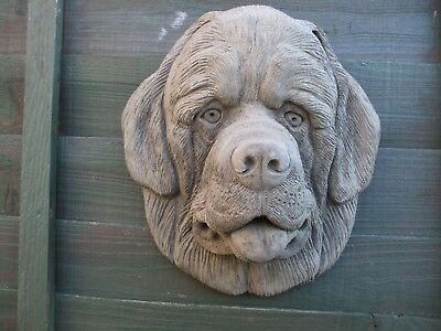 Big Life Size  Stone Newfoundland Dog  Dogs Head Garden  Wall Sculpture