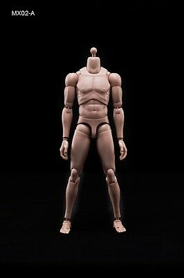 1:6 Caucasian Skin Tone (Matte) Version Male Action Figure Body 12 Inches Tall