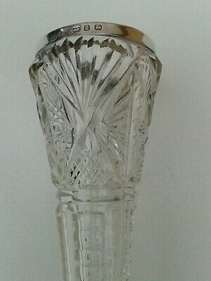 Attractive Antique English Silver Hallmarked Crystal Stem Vase
