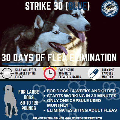 30 day Flea Killer for large dogs, 3 capsule pack 60 to 120 pounds