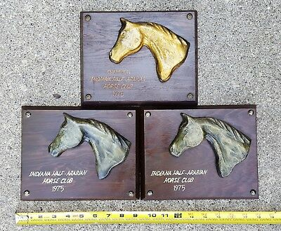 Vintage Lot of 3 Indiana Half Arabian Horse Club 1975 Champion Plaques Trophys