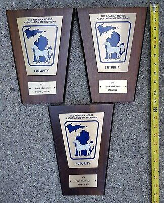 VTG Lot 3 Arabian Horse Associaiton of Michigan Futurity 1979 81 Plaques Trophy