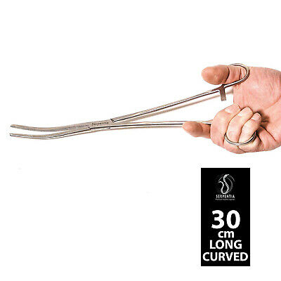 Serpentia Reptile Feeding Tongs / Forceps - 30cm Stainless Steel Curved Tipped