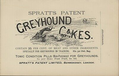 Greyhound Dogs Coursing Old Antique 1904 Spillers Dog Food Advert  Print