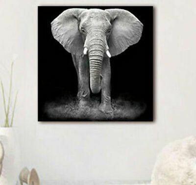 Modern Wall Art Unframed Picture Elephant Canvas Print Painting Home Decor