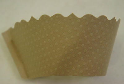 Dress My Cupcake Light Brown Beige Ivory Cupcake Wrappers Set of 120