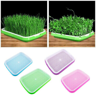 Seed Sprouter Tray Container Grow Lid Sprouting Bean Hydroponic Culture