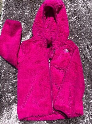 af55caaed THE NORTH FACE Bellflower Purple Oso Fleece Hoodie Girls 0-3 NWT $65 ...