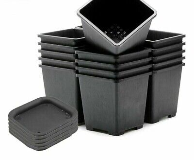 Plastic Square Flower Pot Small Succulent Nursery Vase With Tray Home Decoration