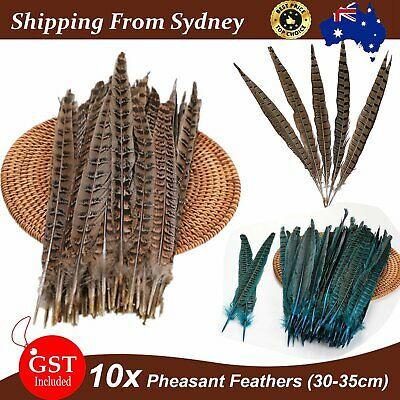 10pcs Natural Pheasant Tail Feathers 30-35cm DIY Art Craft Millinery Vase Decor