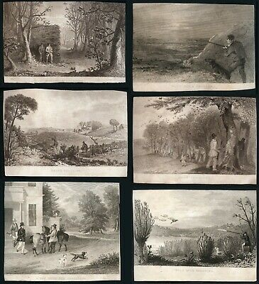 Shooting Hunting Antique Dog Engravings x 6 1840's Rook Wild Duck Snipe Woodcock