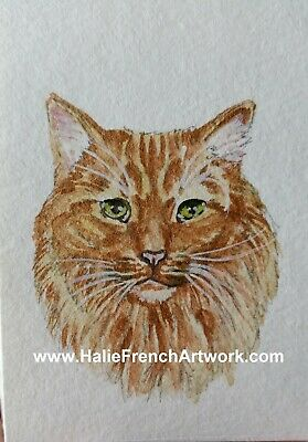 Watercolor Painting original Lion Orange tabby Mainecoon cat ACEO Halie French