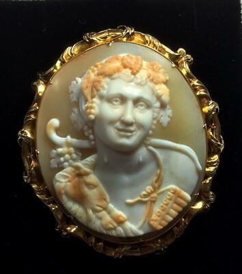 Outstanding Rarest Shell Cameo Brooch Of The God Pan In Front Face Layaway!
