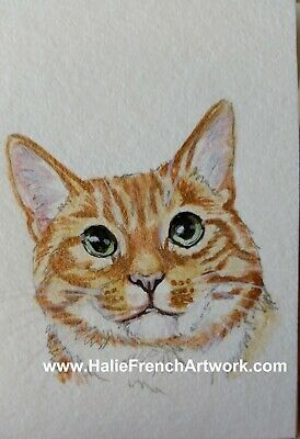 Watercolor Painting Original Orange Tabby Oliver Garfield Cat ACEO HalieFrench