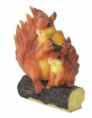 Solar Powered Squirrel With Acorn Garden Light Up Outdoor Ornament Statues Decor