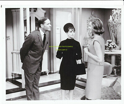 Natalie Wood Sex and the Single Girl Promo Photo Still 1964 Romance Comedy Movie