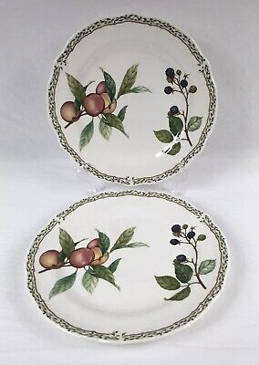 "Lot of 2 Noritake Primachina #9416 ROYAL ORCHARD 10-5/8"" Dinner Plates Japan"