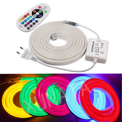 220V Flex LED Neon Rope Light RGB 1m 5m 10m 25m 50m  Outdoor for Holiday Party