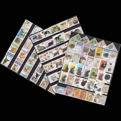 Unused Cats Post Mark Animal Postage Timbres Stamps For Collecting 100Pcs Lot