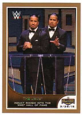 2016 Topps WWE Road to Wrestlemania Bronze Parallel #2 The Usos