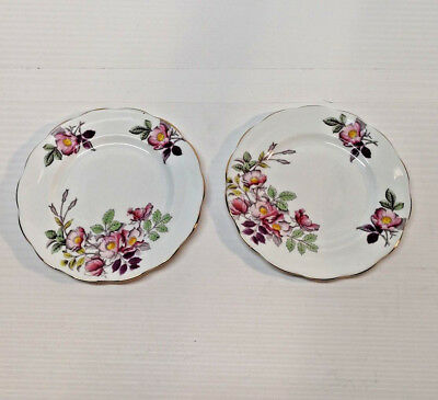 "Royal Albert Flower of the Month Series Bone China England Dog Rose 8"" plates"