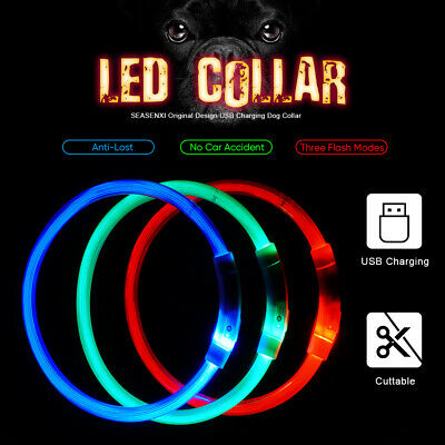 SAFETY LED Dog Pet Light Up Collar Night Glow Adjustable Bright 4 Colors Leash