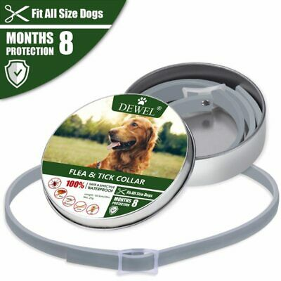Dewel Flea & Tick Collar for Small large dogs 8 Month Protection, Up to 18lbs Nw