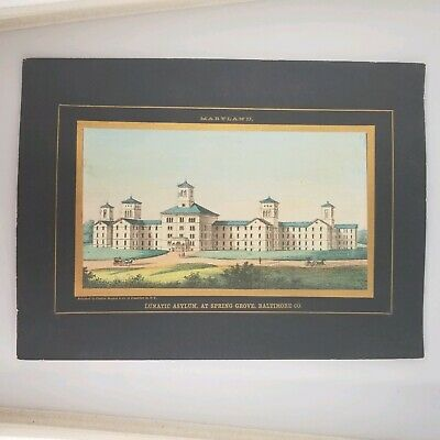 Charles Magnus Lunatic Asylum Spring Grove Baltimore, MD 1860s Lithograph Print