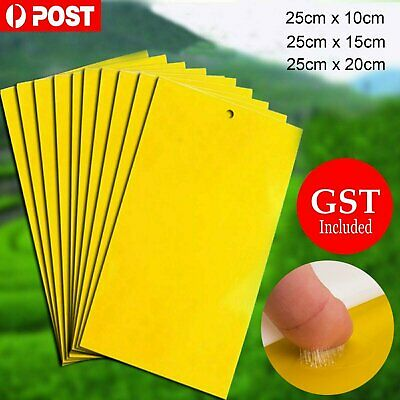 10/20Pc Yellow Sticky Insect Killer Whitefly Thrip Fruit Fly Gnat Leafminer Trap