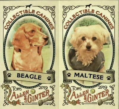 2019 Topps Allen & Ginter Complete (25) Card Collectible Canines Mini Insert Set