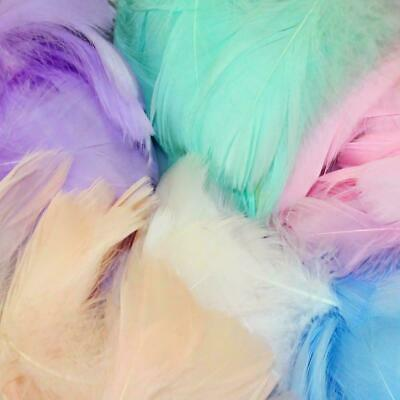 100pcs Natural Goose Feathers 6-12 Cm Swan Plume DIY Decoration Carnival Cr N4O8
