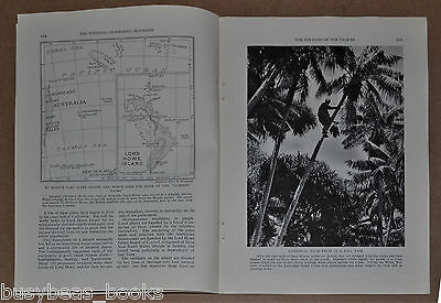 1935 magazine article about LORD HOWE ISLAND, South Pacific, natives, Tasman