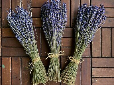 Fragrant Dried Lavender Bunch |250+ stems| Home Decor | Wedding Floral